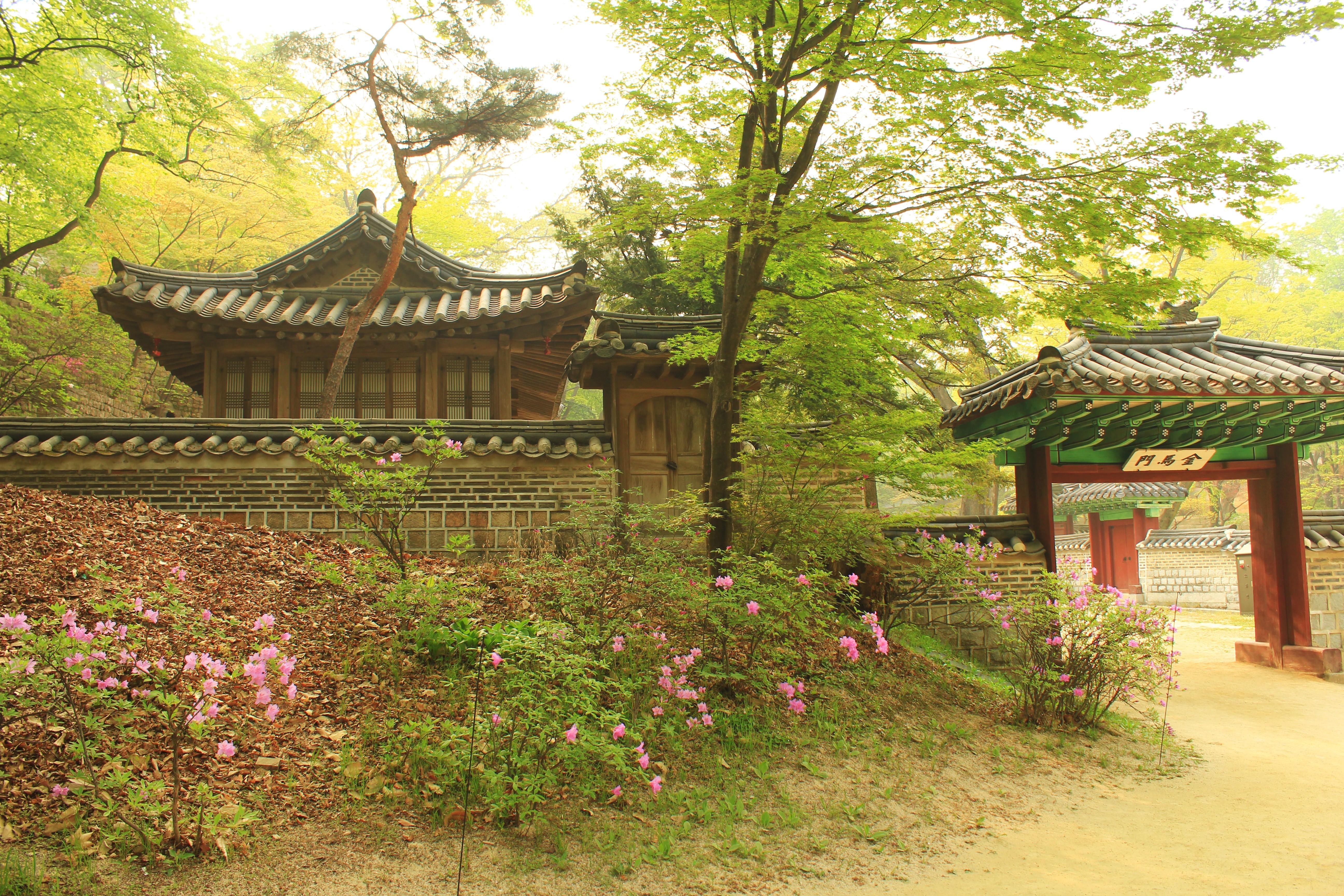 The Secret Garden At Changdeokgung Palace, Seoul