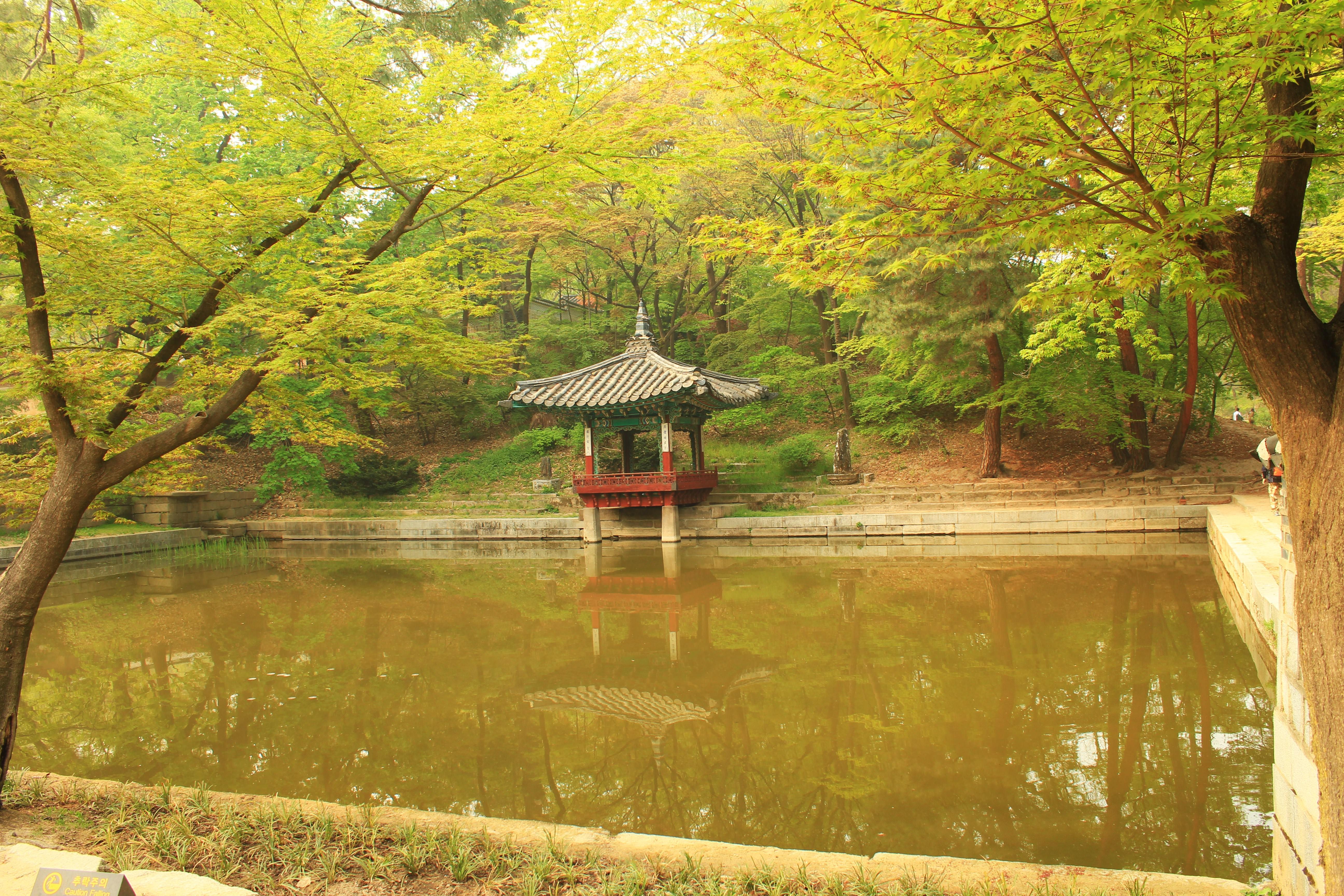 Secret Garden: The Secret Garden At Changdeokgung Palace, Seoul