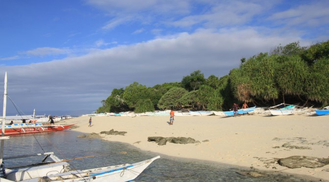 Panglao Island Hopping: Dolphin Watching, Snorkeling, & The Virgin Island