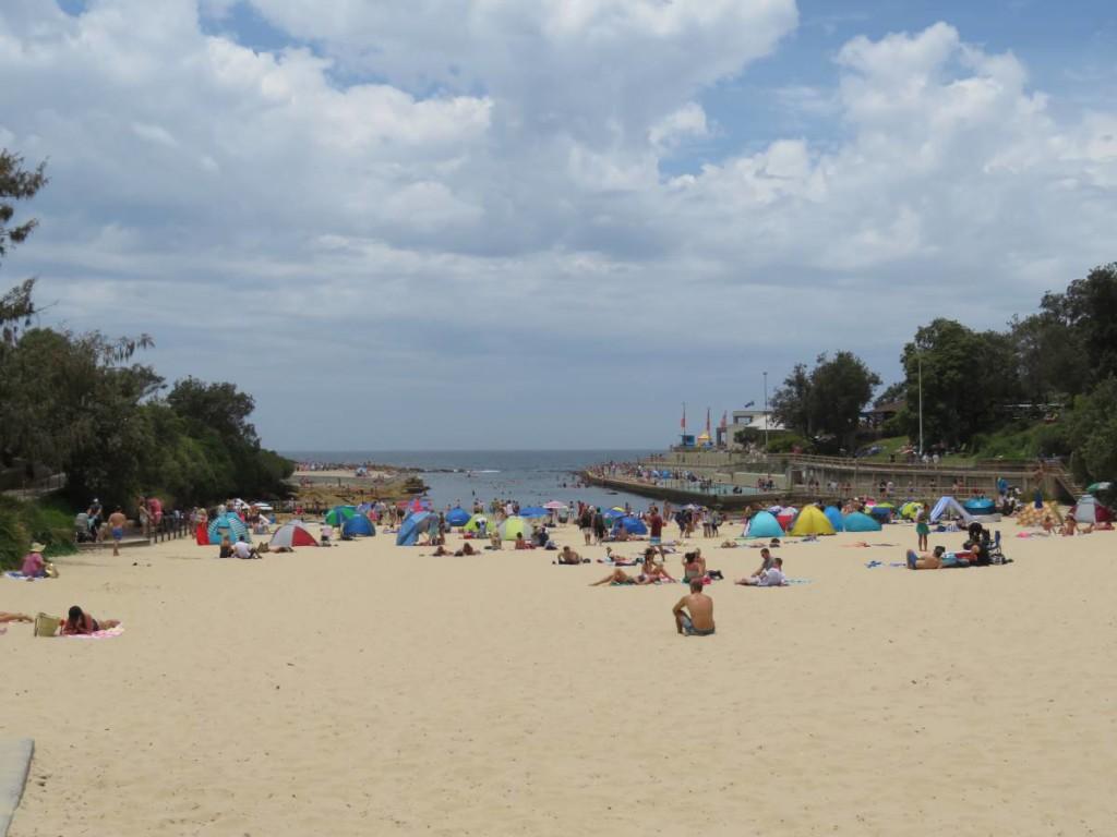 bondi-coastal-walk-clovelly-beach