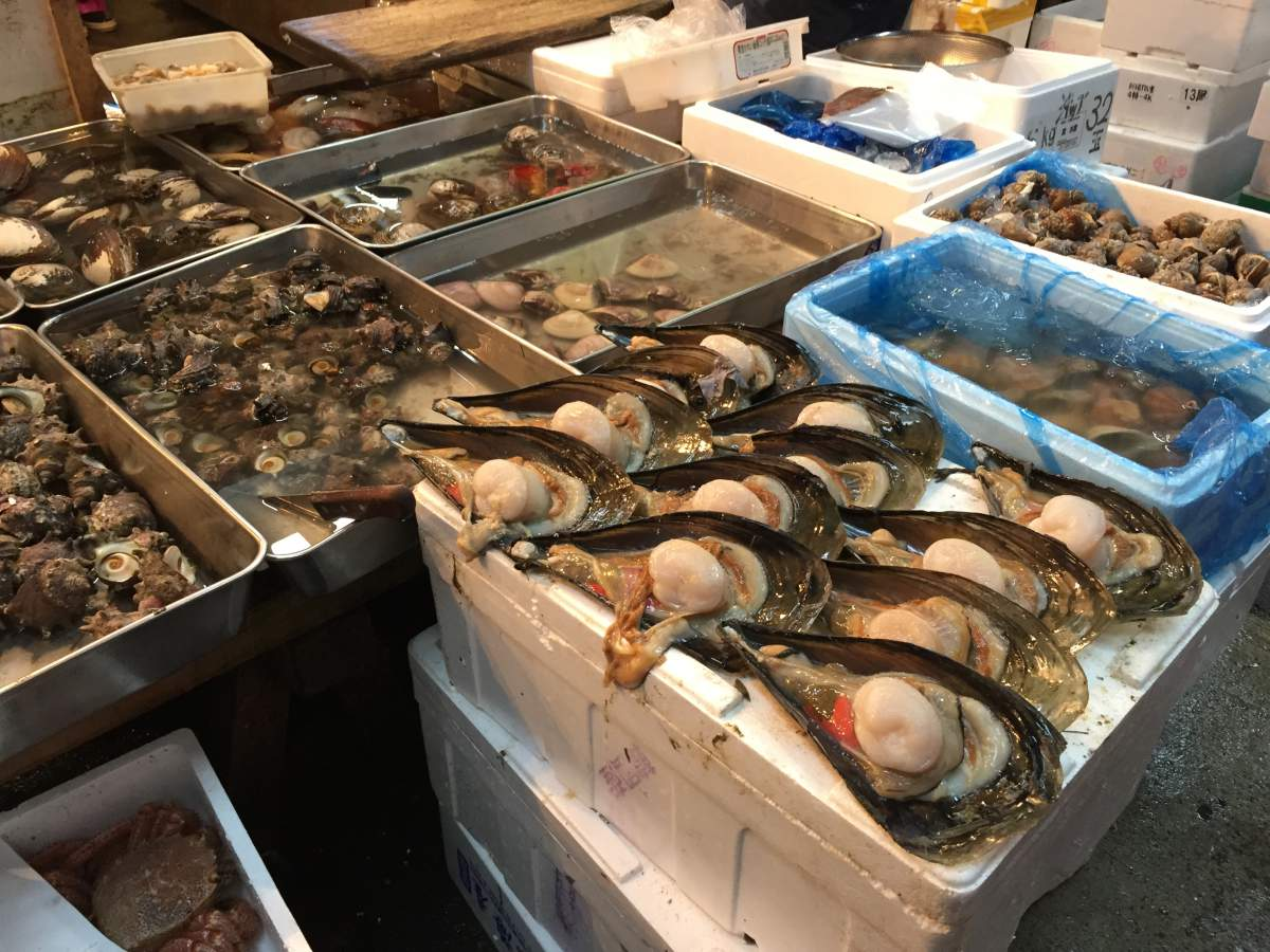 A Complete Guide To The Tsukiji Fish Market Tokyo